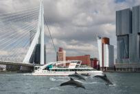 Artprint Wild Wild Rotterdam, Spido