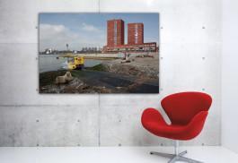 Artprint-Wild-Wild-Rotterdam,-SplashTours,-aan-de-muur