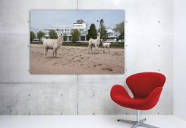 Artprint-Wild-Wild-Rotterdam,-Van-Nellefabriek,-aan-de-muur